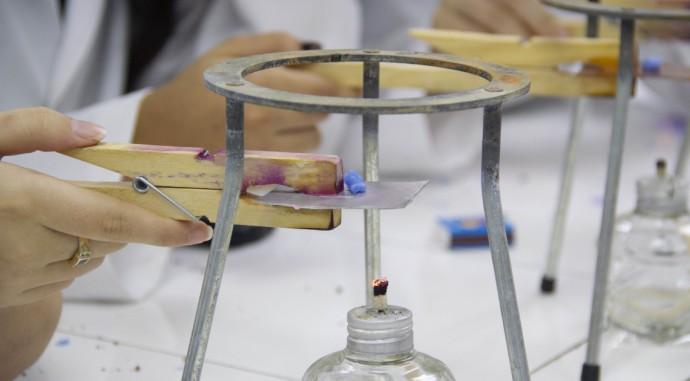 foto de Science Proyect Week